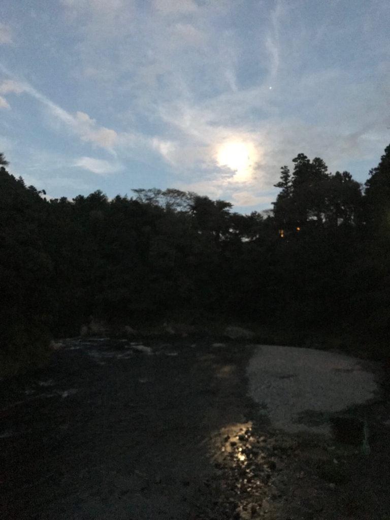 龍雲-龍の雲 画像③